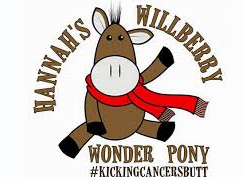 Hannah's Willberry Wonder Pony Charity
