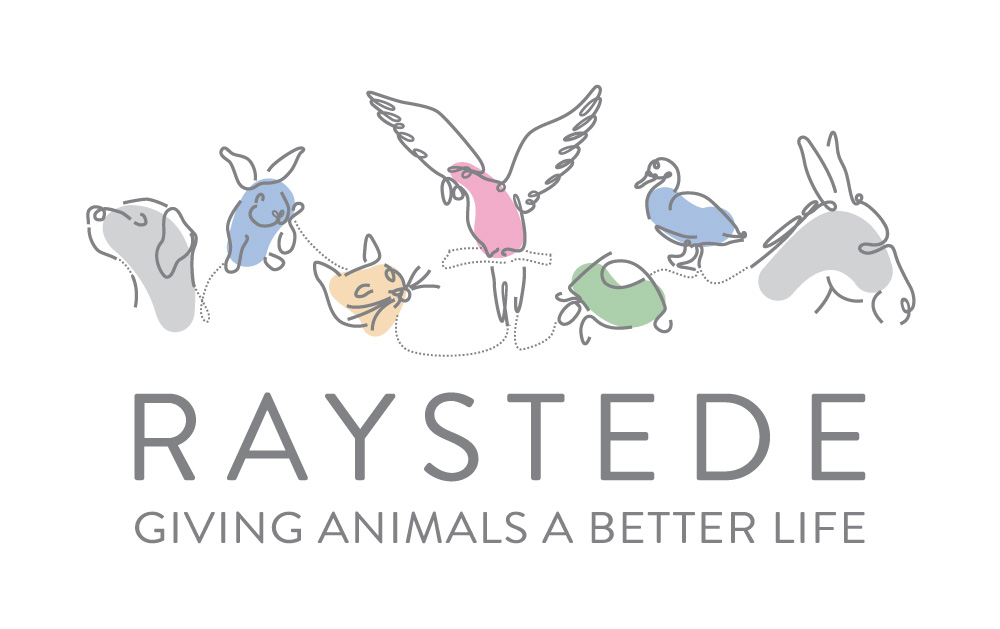 Raystede