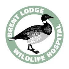 Brent Lodge Wildlife Hospital