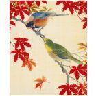 V&A Birds Everyday Single Card