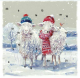 Keeping Cosy Advent Card - Cards For Good Causes Charity Christmas Cards