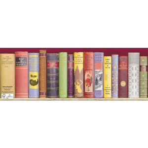 Santa's Bookshelf - Multiple Sclerosis Trust Charity Christmas Cards