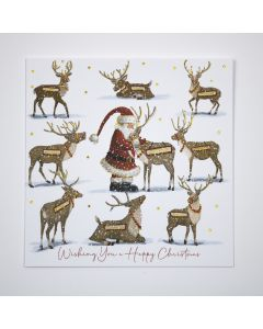 New Santa and Reindeer - British Heart Foundation Charity Christmas Cards