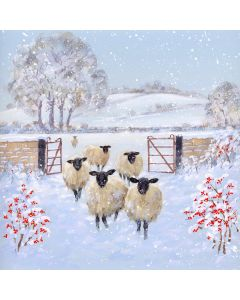 Winter Sheep - Welsh Card - Alzheimer's Society Charity Christmas Cards
