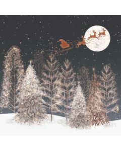 Over the Rooftops - Barnados Charity Christmas Cards