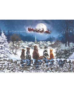 Waiting for Father Christmas - Barnados Charity Christmas Cards