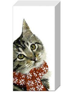 Snowy kitten tissues