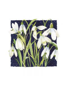 Christmas Snowdrops  - Marie Curie Charity Christmas Cards