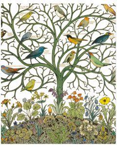 V&A Birds of Many Climes Everyday Single Card