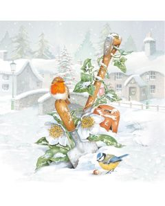 Winter in the Garden - Cancer Research UK Charity Christmas Cards