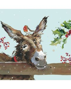 Donkey And Robin - Parkinsons UK Charity Christmas Cards