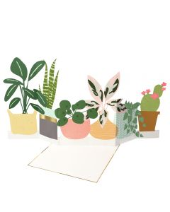 Potted Plant Concertina Single Card