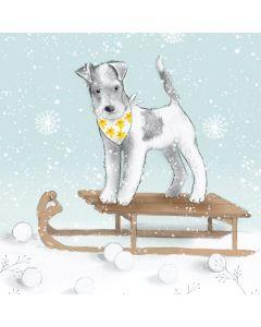 Festive Dog - Marie Curie Charity Christmas Cards