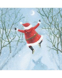 Boxing Day Delight - Multiple Sclerosis Trust Charity Christmas Cards