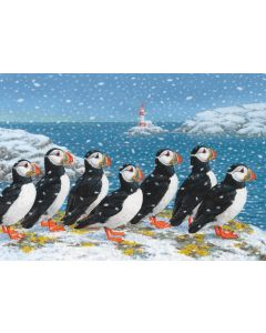 Snowy Puffins - RNLI Charity Christmas Cards