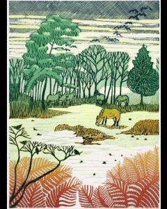 Knettishall Heath  - Suffolk Wildlife Trust Charity Christmas Cards
