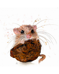 Nuts About You - World Wildlife Fund (WWF) Charity Christmas Cards