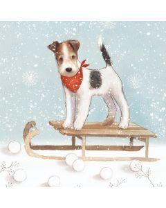 Dog on a Sledge