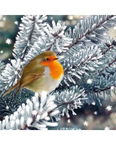 Frosty Robin - The Childrens Society Charity Christmas Cards