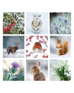 Winter Montage - Alzheimer's Society Charity Christmas Cards